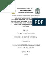 Tesis Para Libro Priscilia m. Del Aguila Manrique