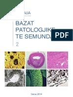Anatomia Patologica Parte 3