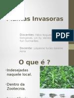 Plantas Invasoras
