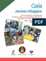 guia_orientaciones_pedagogicas.pdf