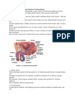Anatomi Dan Fisiologi Sisfem Perkemihan