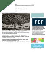 Essa Fotógrafa Viajou o Mundo Atrás de Árvores Ancestrais - IdeaFixa