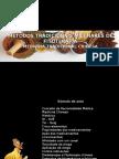 Fitoterapia Em MTC