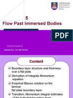 C3 Flow Past Immersed Body