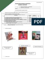 Modelo Científico Nº1 Órganos y Sistemas 8º Básico