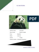 reportaje_panda1.pdf