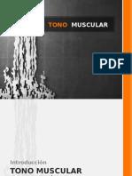 Tono Muscular Maestria Psicologia Clinica