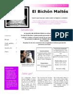 CUIDADOS-MALTES-zorginzuri-malteses.pdf