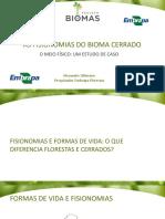 Aula 18_fisionomias Bioma Cerrado