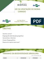 Aula 16_biodiversidade Da Vegetação Do Bioma Do Cerrado
