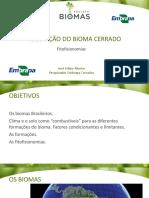 Aula 15_vegetacao Bioma Cerrado