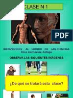 CLASE 6 MI CUERPO  HUESOS Y MÚSCULOS PLANIF UNID 1 CIENCIAS 2° BÁSICO