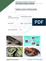 1.Vibrio Parahaemolyticus FDA