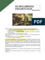 Droit Des Liberte Fondamentales(1)