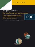 Naoisike Ayuki La Tumba de Las Lucic3a9rnagas