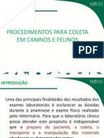 68-Apresentacao_sobre_Metodos_de_coleta_em_caninos_e_felinos.pdf
