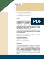 Metabolismo-del-hierro (1).pdf