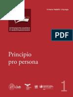 Principio Pro Persona