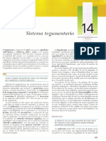 [14 Sistema tegumentario].pdf