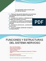 1701-ana patricia aguilar-funciones y organos del sistema nervioso.ppt