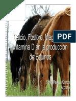 Calcio, Fósforo, Magnesio y Vitamina D en La Producción de Equinos