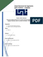 Informe Ing. de Transito