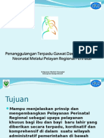 02 Pelayanan Perinatal Regional.ppt