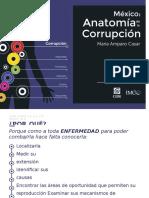 2015_Presentacion_Anatomia_corrupcion.docx