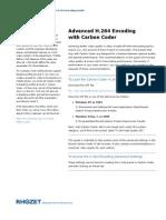 H.264 Encoding Guide (PDF)