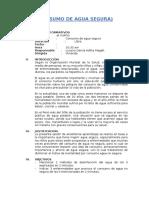 CONSUMO-DE-AGUA-SEGURA.docx