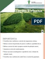 Apresentação Manual Arborização
