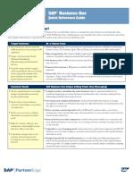 SAPB1 Quick Guideline