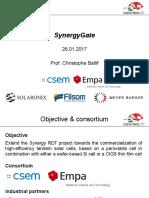 Synergy Gate
