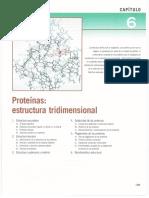 Cap 6. Proteinas Estructura Tridimencional.pdf