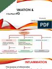 2017_inflammation & Hamodinamic Disorder