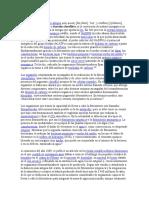 La fotosíntesis.docx