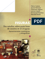 FISURAS.estudio.pasta.base.en.uruguay.