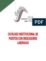 CatalogoInstitucionalDePuestosConIndicadoresLaborales
