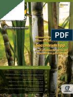 Agroproductividad Vii 2016