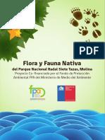 Flora y Fauna Radal 7 Tazas