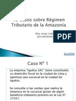 163665255-Casos-Practicos-Amazonia.pdf