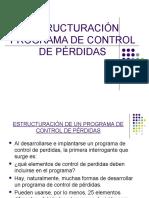 45846905 Estructuracion Programa de Control de Perdidas 2