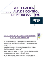 PROGRAMA-DE-CONTROL-DE-PERDIDAS-.pdf