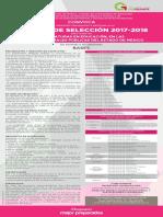Convocatoria 2017-2018