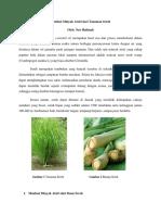 171382314-Destilasi-Minyak-Atsiri-Dari-Tanaman-Sereh.pdf