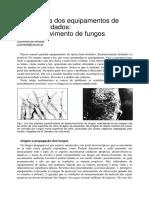 Artigo_fungos.pdf
