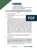 TdR Mejoramiento de Servicio Educativos.pdf