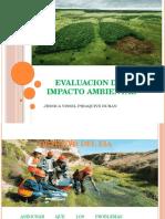 Diapositivas Evaluacion Del Impacto Ambiental