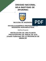 Intalacion de Una Planta Procesadora de Snackde Oca ( Oxalis Tuberosa )