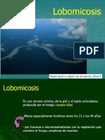 Clase 11 Lobomicosis y Rinosporidiosis Prothotecosis y Entomoftoromicosis 2016